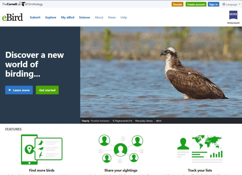 Screenshot of eBird website